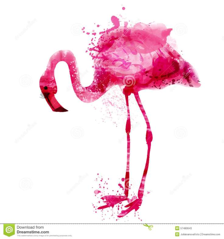 vector-watercolor-pink-flamingo-splashes-bright-57480643
